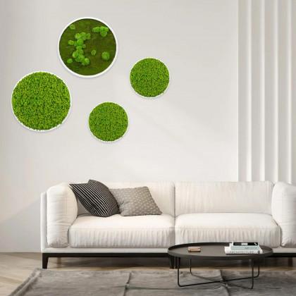 Cerchi in verde stabilizzato